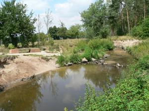 Rodau Wasserplatz